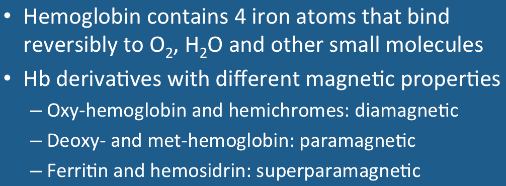 Hemoglobin Hb Is Synthesized In A Complex Series Of Steps The Heme Portion Sythesized Both The Mitochondria And Cytosol Immature Red